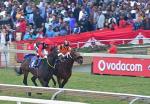 Horses racing at the Durban July