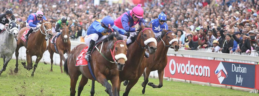 Horses racing at the Durban July